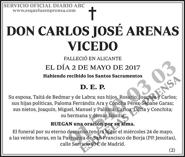 Carlos José Arenas Vicedo